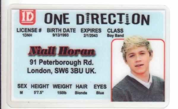 Niall Horan ONE DIRECTION novelty plastic collectors card Drivers License Nial