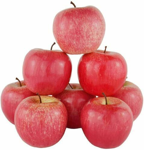 12 x artificial fruit faux RED APPLE fake food kitchen office home party decor