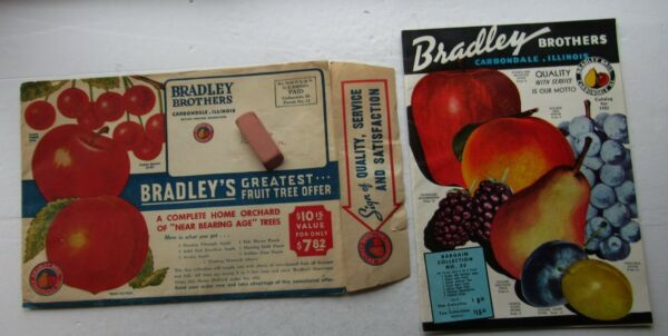 Bradley Brothers Fruit Catalog 1951 Carbondale Ill. w Envelope amp; Order Form