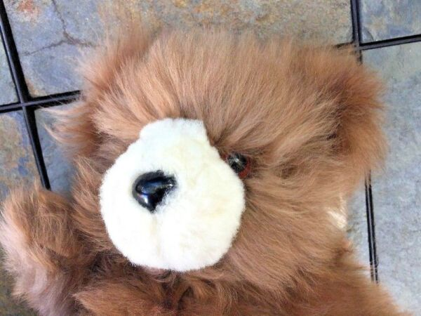 Vintage Alpaca Fur ❤️ HANDMADE Glass Eye ❤️ TEDDY BEAR ❤️ ONE OF A KIND 11