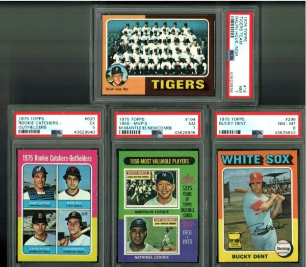 SUPER SALE LOT OF 9 1975 GARY CARTER MICKEY MANTLE DENT TEAM MAYBERRY PSA + MO