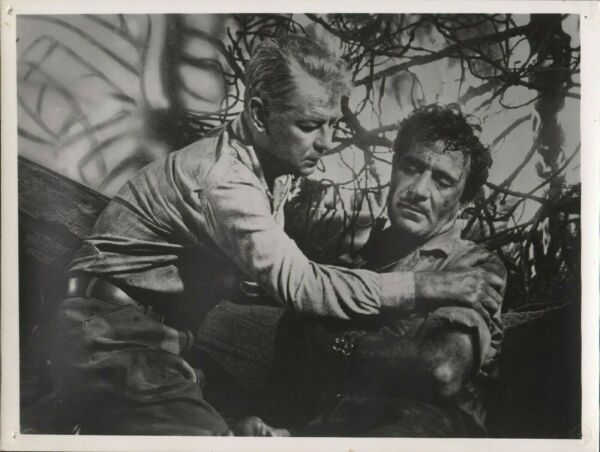 ALAN LADD amp; GILBERT ROLAND in quot;Guns of The Timberlandquot; Original Photo 1960 $18.50
