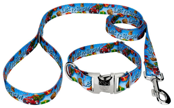 Country Brook Design® Premium Let It Snow Dog Collar and Leash