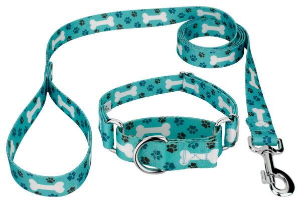 Country Brook Design® Oh My Dog Martingale Dog Collar amp; Leash $17.95