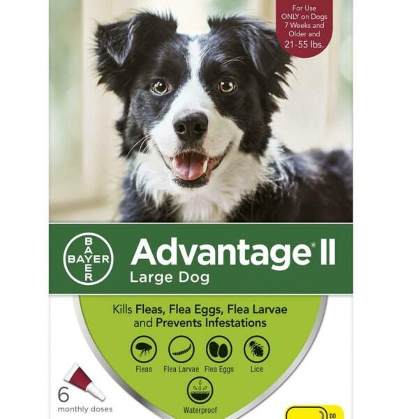 Bayer Advantage II for Large Dogs 21-55 lbs - 6 Pack - NEW - FREE Shipping