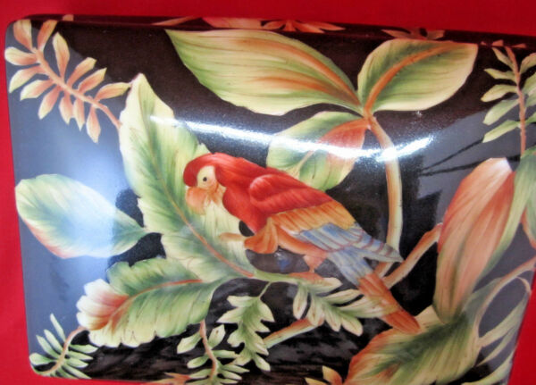 Beautiful large box with parrots