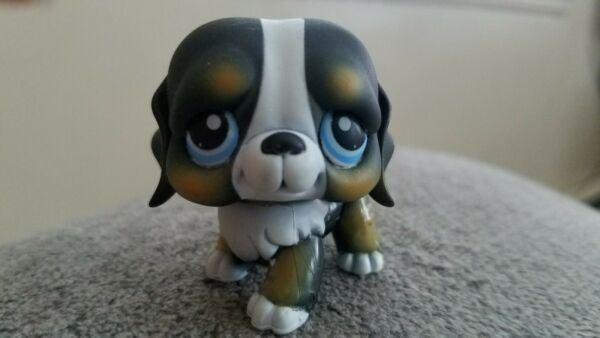 LPS Littlest Pet Shop Black Dog St. Bernard 145 Blue Eyes $10.99