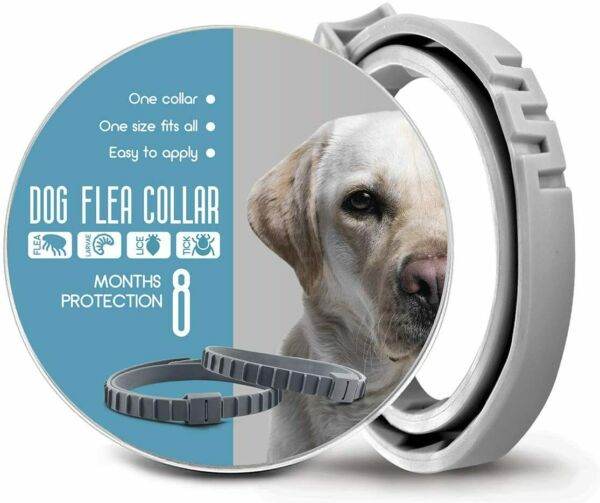 Herbal Oil Dog Flea and Tick Control Collar-One Size Fits All - Non-Toxic $18.95
