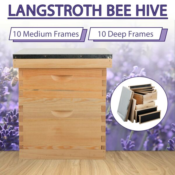 10 Deep 10 Medium Frames Hive Frame Bee Hive Beehive W.Metal Roof for Beekeeping $91.39
