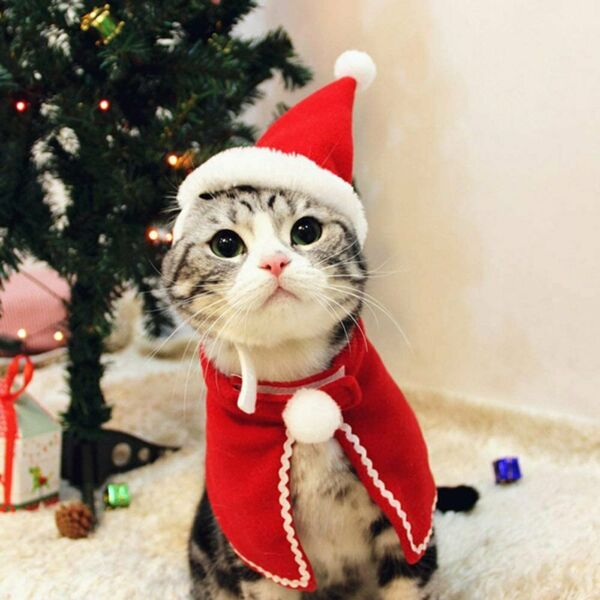 Pet Cat Dog Christmas Costume Clothes Red Cloak Cape Shawl Coat With Hat Decor $9.99
