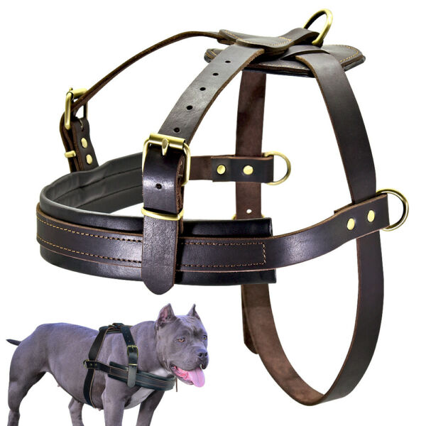 Brown Pet Dog Leather Harness Adjustable Large Breed Heavy Duty Rottweiler XXL $47.99
