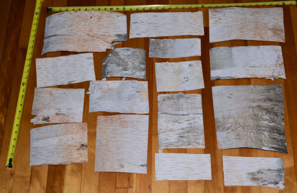 Natural White Birch Bark Sheets 16 Pieces 6 SQ FT