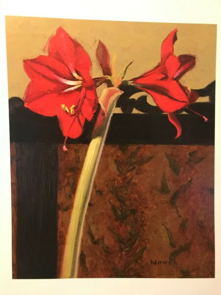 Art Print – Amaryllis and French Screen I by Shirley Novak