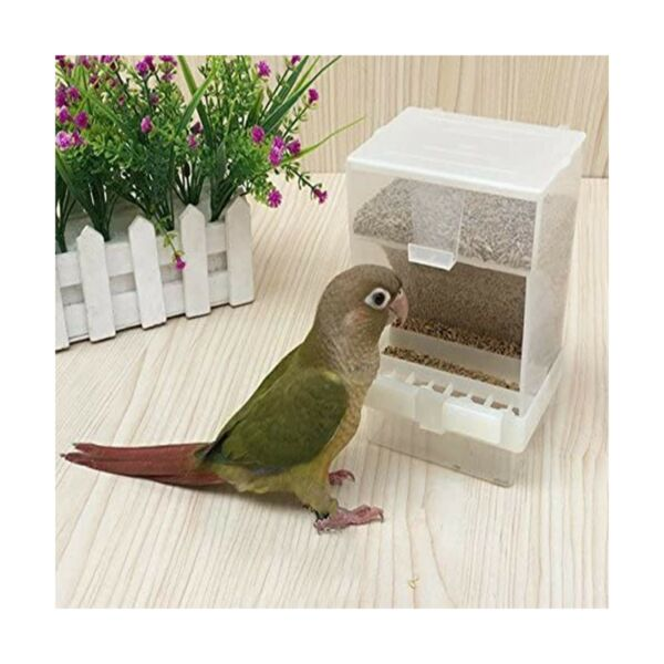 Parrots Birds Automatic Feeders Budgerigar Parakeet Seed Food Containers Boxes $16.61