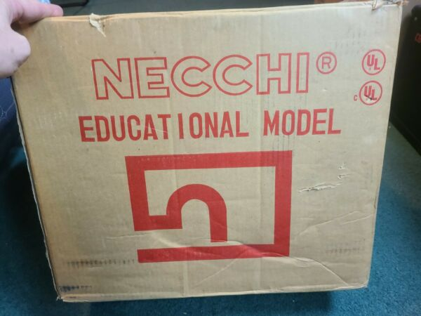 NECCHI SEWING MACHINE EDUCATIONAL MODEL 4575 IN BOX NICE WORKING