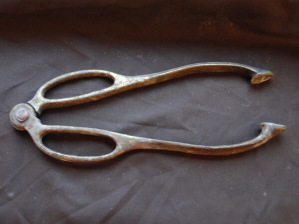 COAL TONGS BRASS ANTIQUE ENGLISH GREAT PIECE. 1880 UNMARKED  GREAT QUALITY