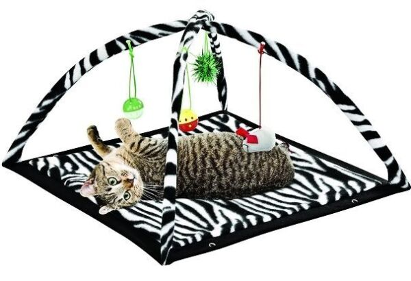 Zebra Print Cat Play Tent with Dangle Toys Pet Interactive Kitty 22quot;x23quot;x13 NEW $15.48