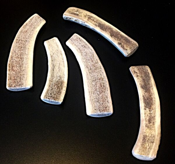 5 Small ElkDeer Split Antler Dog Chew...SOFT MARROW...Free Shipping...Gentle!!