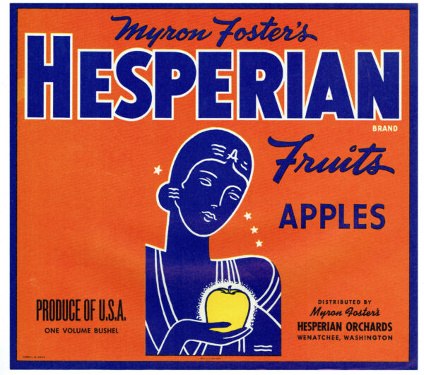 Wholesale Lot of (25) HESPERIAN Brand Fruits Apples Crate Labels - Art Deco