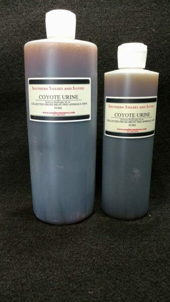 COYOTE URINE 100% PURE PROFESSIONAL QUALITY TRAPPING FOX COYOTE BAIT LURE
