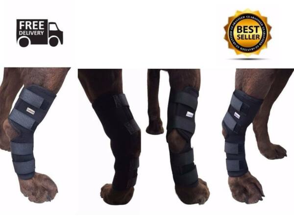 Knee Brace For Dogs Hock Protector Pet Therapeutic Dog Rear Leg 4 Straps XL L S $89.99