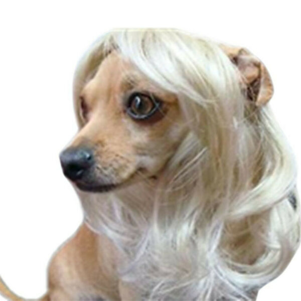 Dog Costumes colorfull synthetic hair pet wig lovely pet dog wigs Blonde TP51 $5.99