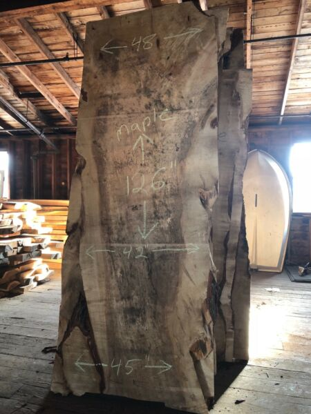 "live edge silver maple huge wood slab kiln dried 3""x4248""x126"""