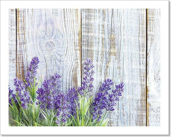 Lavender Art Print Home Decor Wall Art Poster - C