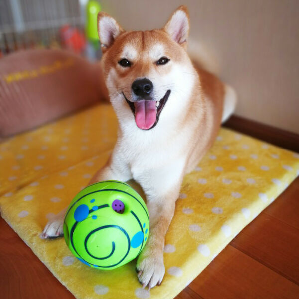 Funny Wobble Wag Giggle Dog Ball Toys Squeaky Sound Ball Pet Dog Chew Bite Toy