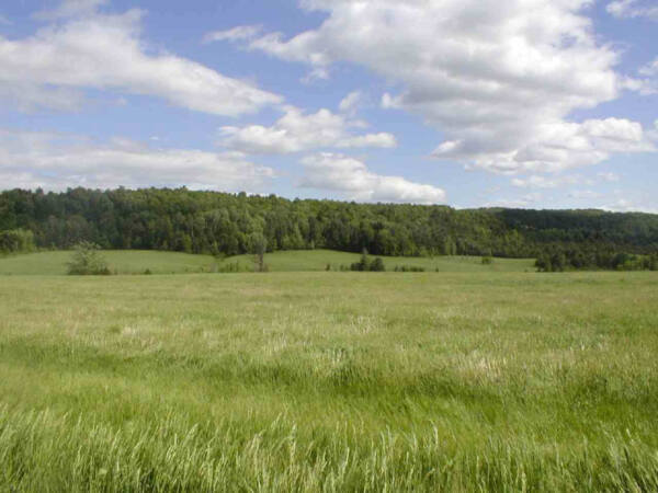 93+ ACRES Lake George NY Subdividable 10 Lots ADIRONDACKS Commercial+Residential