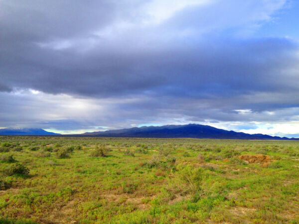80 ACRE NEVADA RANCH ONLY $495 DOWN FINANCED AT 0% INTEREST! NO CREDIT CHECK!