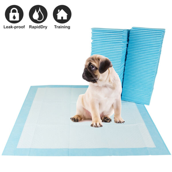 100 Pet Disposable Training Pads for Dog and Puppy Underpads 22