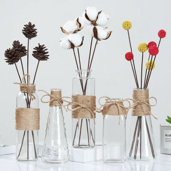 Creative Nordic Glass Vases Transparent Water Hydroponic Room Table Decoration