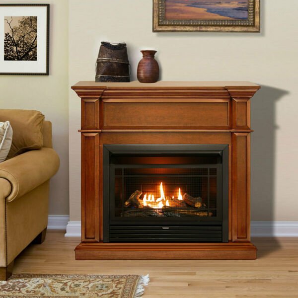 Duluth Forge Dual Fuel Ventless Gas Fireplace - 26000 BTU Remote Control