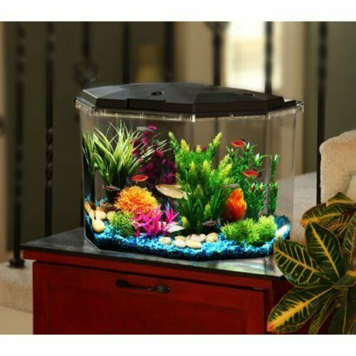 Aqua Aquarium Culture 6.5 Gallon Semi Hex LED Lighting Filter Kit Fish Tank Desk $44.03