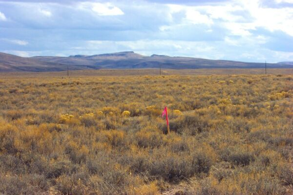 RARE NEVADA 1 ACRE LOT AT  WILDHORSE RESERVOIR! NATIONAL FOREST~LAKE~NO RESERVE!