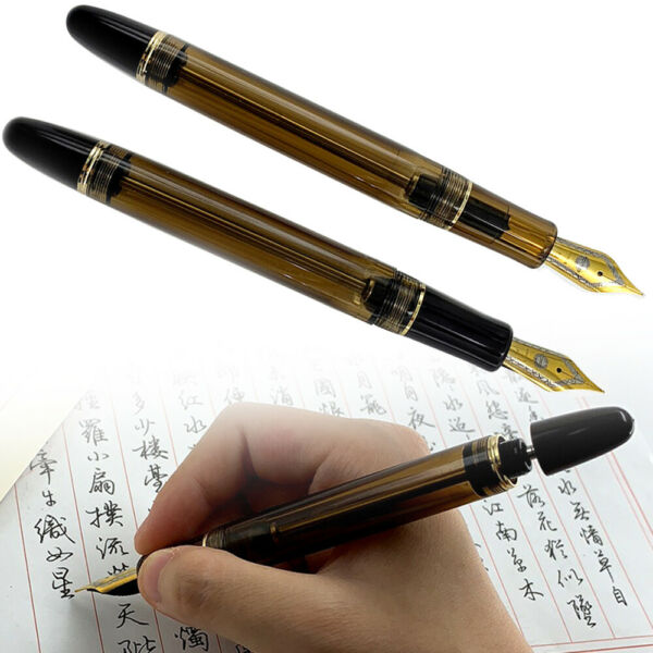 Wing Sung 699 Vaccum Filling Translucent Fountain Pen 0.5mm Fine Nib Office Gift