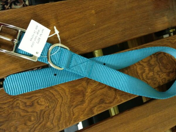 Buckle Dog Collar turquoise Nylon 24 Inches Long Support Dog Rescue $3.00