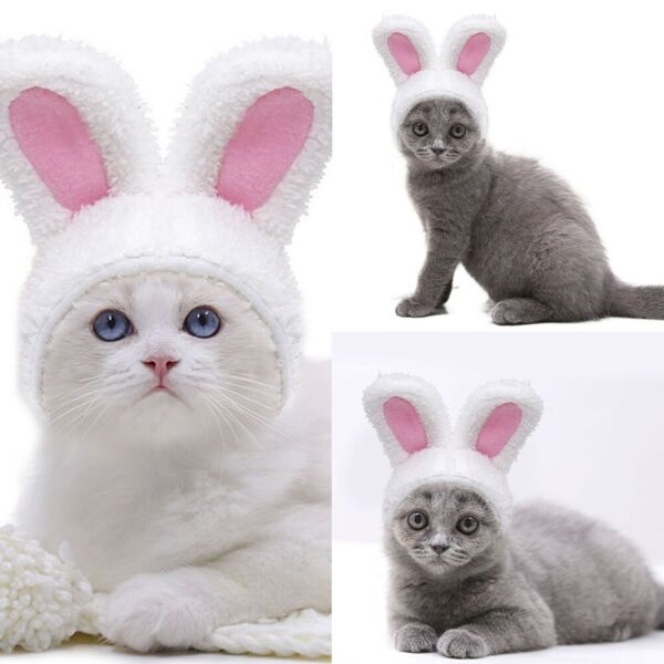Cat Bunny Rabbit Ears Hat Cap Pet Cosplay Clothes Costumes Dogs Small For Cat $2.95