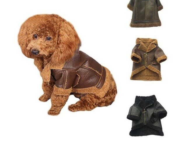 Puppy and small dog leather jacket USA Shipped $11.00