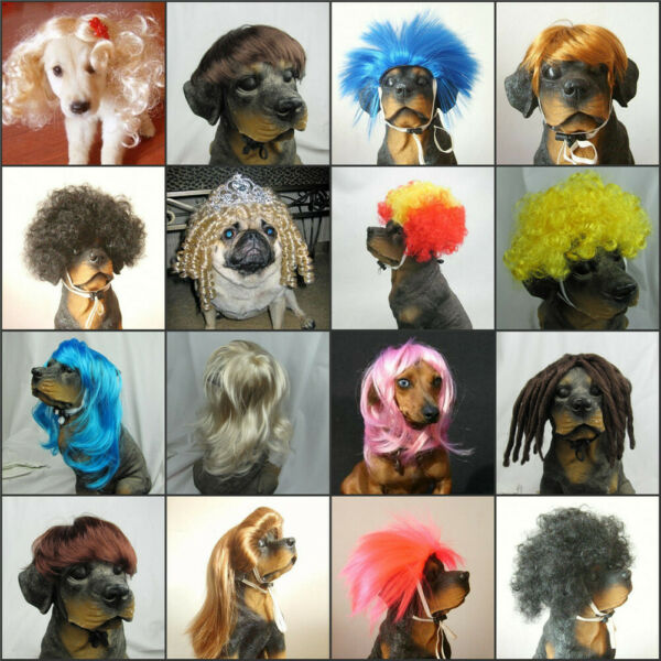USA Stock Pet Dog Costumes Synthetic Pet Wig Dogs Cats Wig Lovely Pet Dog Wigs $12.99