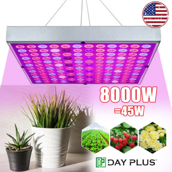 8000W LED Grow Light Hydroponic Full Spectrum Indoor Plant Flower Growing Bloom $28.21