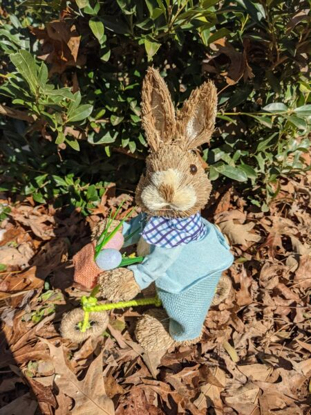 Seagrass Easter Bunny on Bike...on the go.. dressed in his Easter finery $15.99