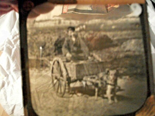 victorian magic lantern slide dog cart GBP 8.00