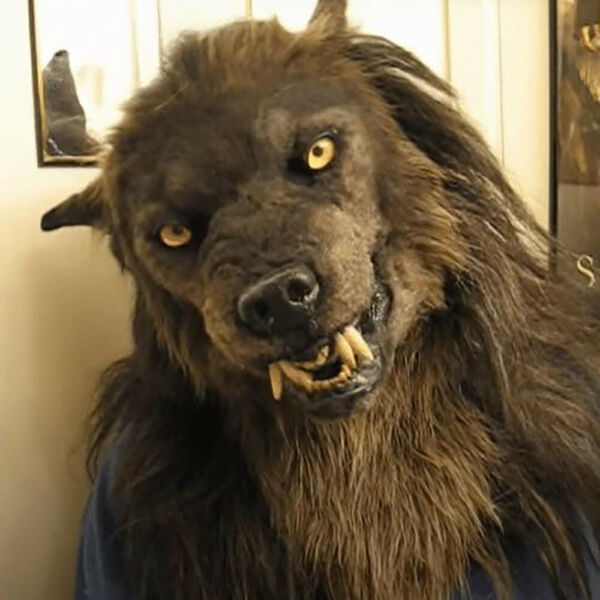 Halloween Latex Headgear Scary Wolf Dog Horror Werewolf Mask House Party Props $26.99