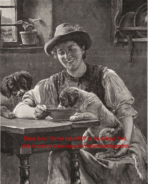 Dog Saint Bernard Puppies Eating from the Table Training 1890s Antique Print $59.95