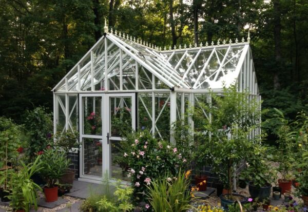 Royal Victorian Junior Antique Orangerie Greenhouse