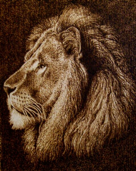 ORIGINAL ANIMAL DRAWING-PYROGRAPHYWOODBURNING-MAJESTIC LION-DRAWING WITH FIRE