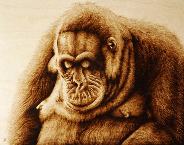 ORIGINAL PYROGRAPHYWOODBURNING ANIMAL ART: MONKEYORANGUTAN