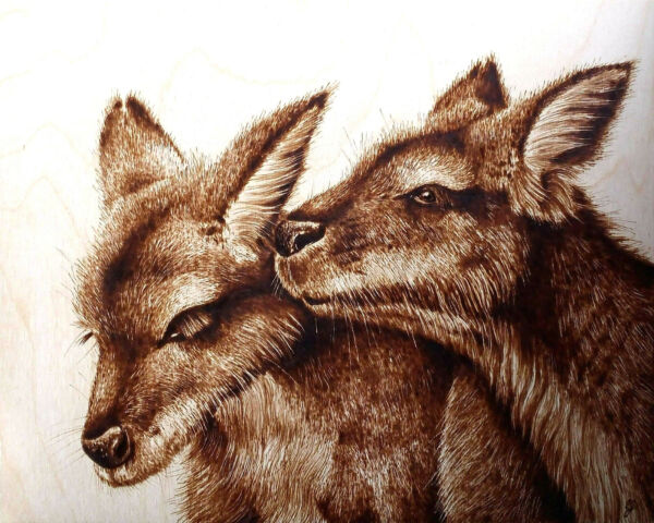 ORIGINAL CUTE ANIMAL DRAWING- PYROGRAPHYWOODBURNING-